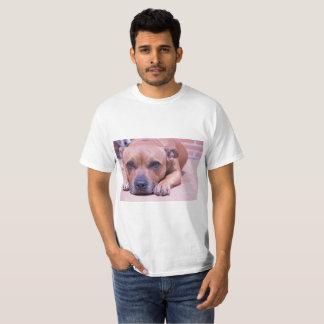 Staffy shirt