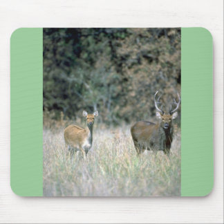 Stag and deer mousepads