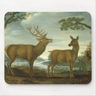 Stag and hind in a wooded landscape mouse pad