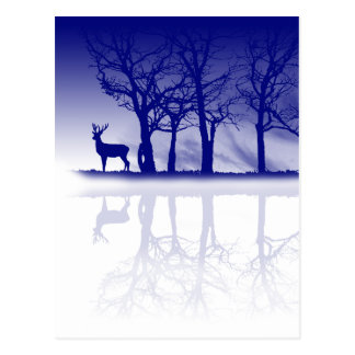 Stag At Dusk Postcard