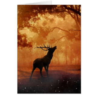 Stag at Sunset Greeting Card