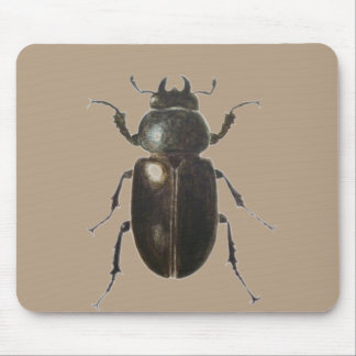 Stag Beetle 2011 Mouse Pad