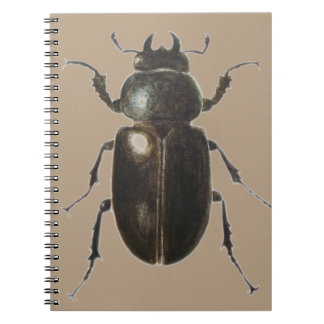 Stag Beetle 2011 Notebook