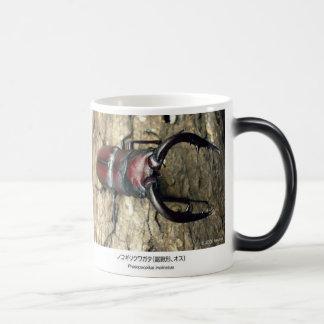 Stag Beetle and Prosopocoilus inclinatus Morphing Mug