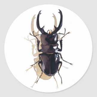 """""""Stag beetle"""" Insect Watercolor Art Round Sticker"""