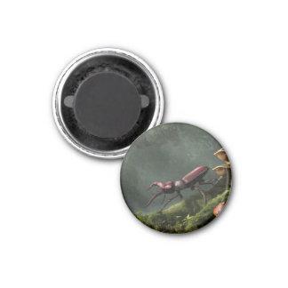 Stag Beetle Refrigerator Magnet