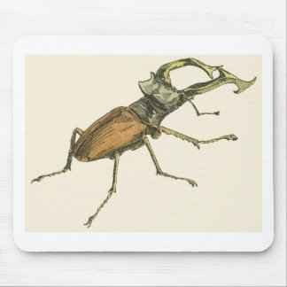 Stag Beetle Mouse Pads