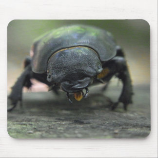 Stag Beetle Mousepads