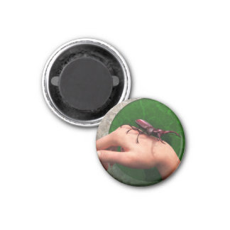 Stag Beetle On Hand Fridge Magnet