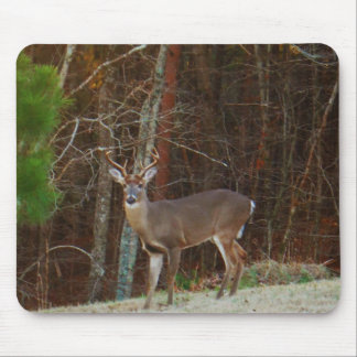 Stag / Buck  Deer Oak Camouflage Mouse Pad