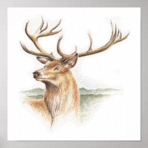 Stag Deer Print