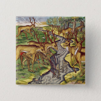 Stag Hunt, from 'Brevis Narratio' 15 Cm Square Badge