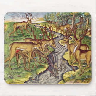 Stag Hunt, from 'Brevis Narratio' Mouse Pad