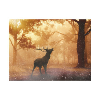 Stag in Forest Canvas Print