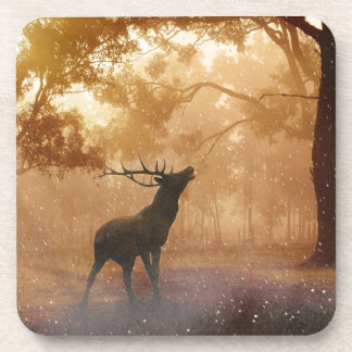 Stag in Mystical Forest Coaster