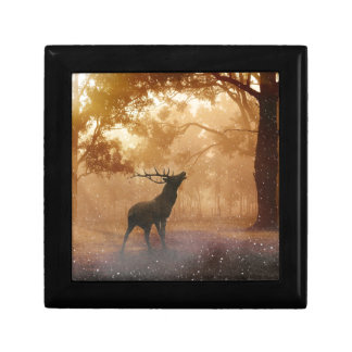 Stag in Mystical Forest Gift Box