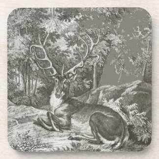 Stag In The Forest Coaster