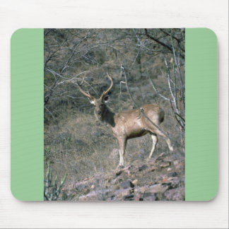 Stag Mouse Pads