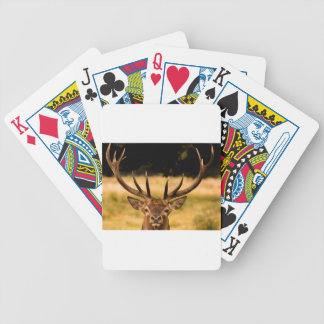 stag of richmond park bicycle playing cards