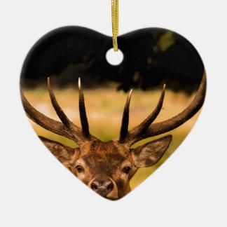 stag of richmond park christmas ornament