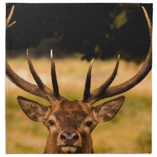 stag of richmond park napkin