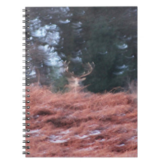 Stag on a hill notebook
