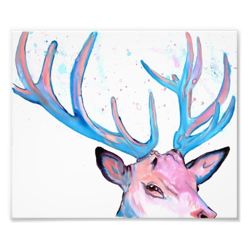 Stag Photo Print