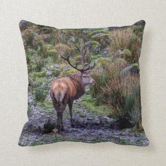 Stag photograph cushion