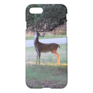 Stag tangles antlers in branch iPhone 8/7 case