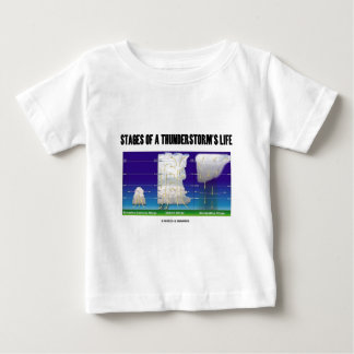 Stages Of A Thunderstorm's Life (Meteorology) Tee Shirts
