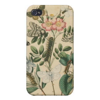 Stages of Butterfly Life by Vision Studio Cases For iPhone 4