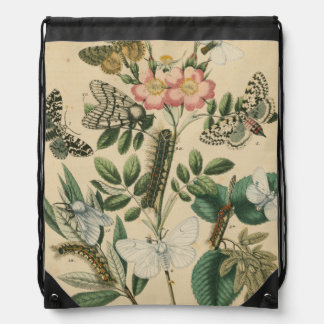Stages of Butterfly Life by Vision Studio Drawstring Bag