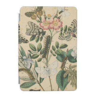 Stages of Butterfly Life by Vision Studio iPad Mini Cover
