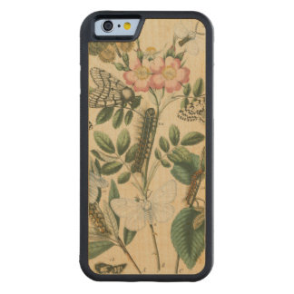 Stages of Butterfly Life by Vision Studio Maple iPhone 6 Bumper