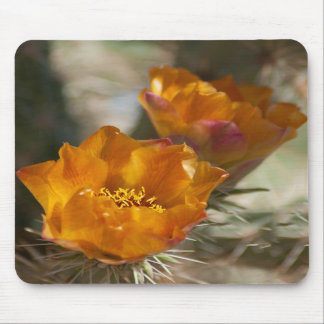 Staghorn Cholla Cactus Blossoms Mousepad