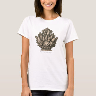 Staghorn Coral T-Shirt