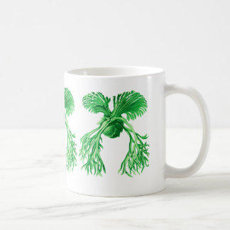 Staghorn Fern Basic White Mug