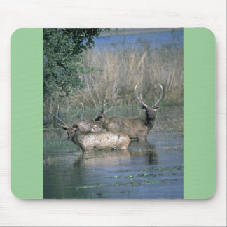 Stags in water mouse pad