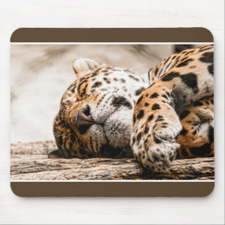 stained cat mouse mat