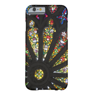 Stained Glass detail 2 Barely There iPhone 6 Case