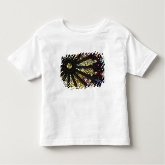 Stained Glass detail 2 Toddler T-Shirt