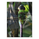 Stained Glass - Dragonfly Happy Birthday Card Card