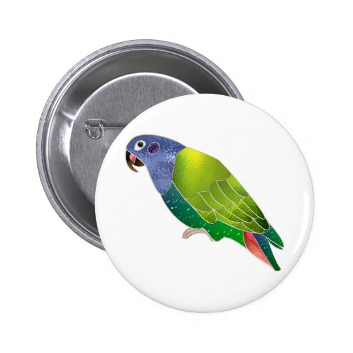 Stained Glass Pionus Parrot Pinback Button