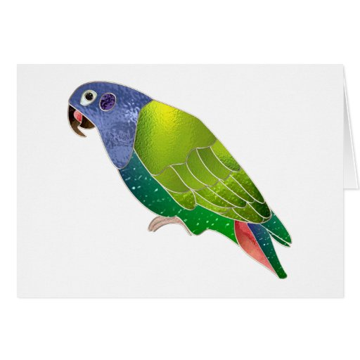 Stained Glass Pionus Parrot Cards