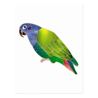Stained Glass Pionus Parrot Post Cards