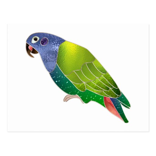 Stained Glass Pionus Parrot Postcard