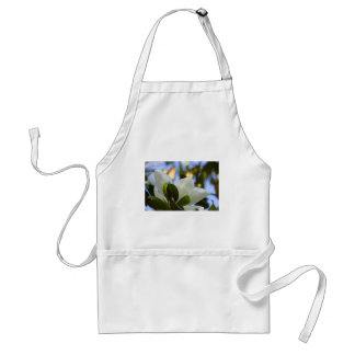 Stained Glass Sky Southern Magnolia Gifts Apparel Standard Apron