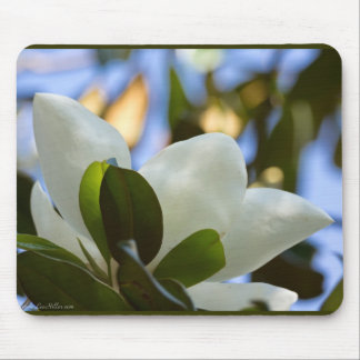 Stained Glass Sky Southern Magnolia Gifts Apparel Mouse Pad
