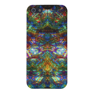 Stained Glass Window iPhone 5/5S Cover