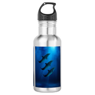 Stainless Steal Water Bottle with dolphins 532 Ml Water Bottle